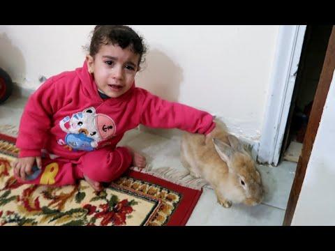 ارنب مريم ضاع ومريم بكت !!