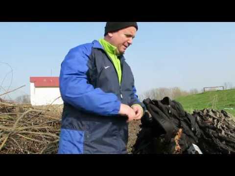Cutit Vanatoare Mil-Tec Maner Lemn from YouTube · Duration:  1 minutes 35 seconds