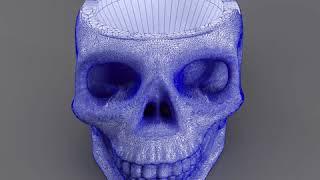 3D Model of skull smoke-36 Review