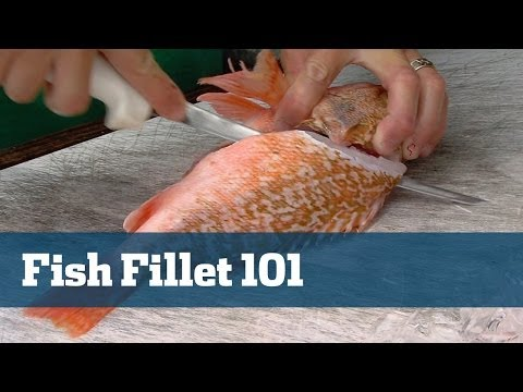 How To Fillet Fish Very Simple Anyone Can Do It