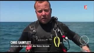 Les iles Bermudes