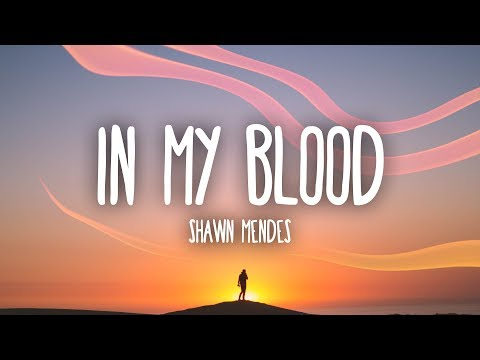 Shawn Mendes - In My Blood (Lyrics)