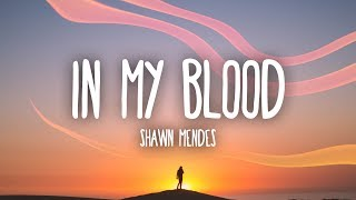 shawn mendes in my blood lyrics