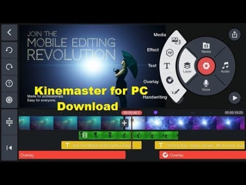 Image result for kinemaster for pc