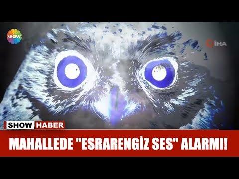 "Mahallede ""Esrarengiz Ses"" Alarmı!"
