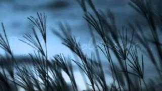Begadang (Karaoke Version) - Originally Performed By Rhoma Irama