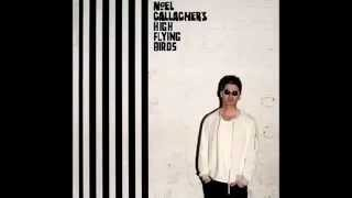 Noel Gallagher Hig Flying Birds - The Right Stuff
