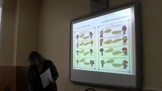 Реферат Значение гимнастики в физическом воспитании Формирование гражданской идентичности у дошкольников