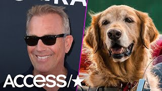 Kevin Costner's 10-Year-Old Son Adorably Raves Over Him Playing A Dog