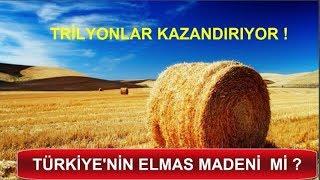 SAMAN NAS L TRİLYONLAR KAZAND R R   Türkiyenin Elmas Madeni   İşte Gerçekler