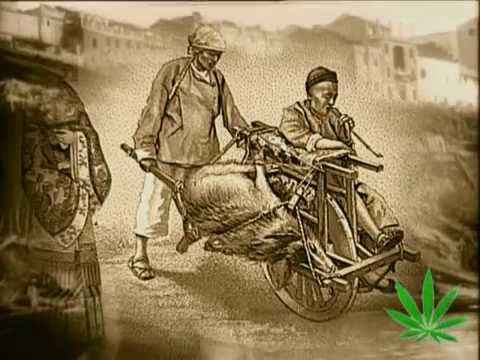 The Magic Weed - History Of Marijuana