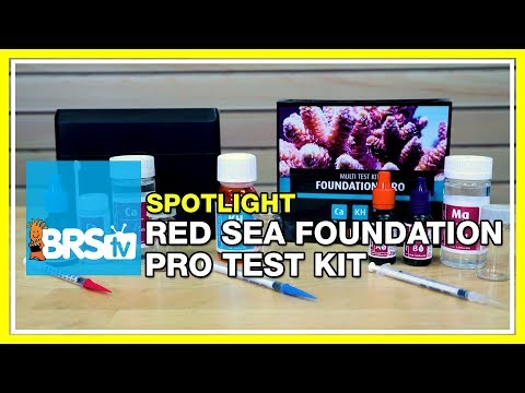 Testing Your Reef With The Red Sea Foundation Pro Test Kit | BRStv Spotlight