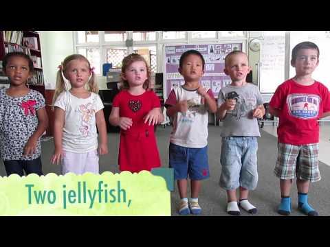 Three Jellyfish