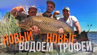 Ловля карпа летом 2020 Мощные поклевки рыбы Водоем Каневской