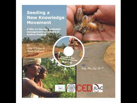 Seeding a New Knowledge Movement