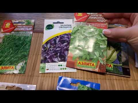 Лучшие сорта зелени и овощей для 2020г.Обзор.