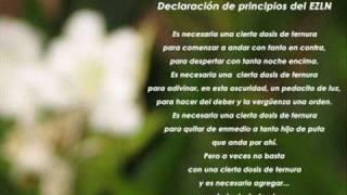 Declaración de Principios del EZLN - Salario Mínimo.wmv