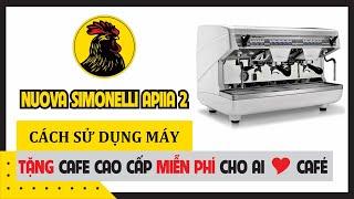 Nuova Simonelli Appia 2 group | Máy pha cà phê nhập khẩu của Ý 2 group giá rẻ
