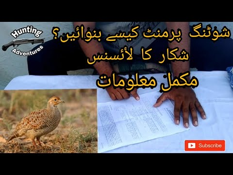 How To Make Shooting Permit In Pakistan.(Sindh And Punjab)| License For Bird Hunting.