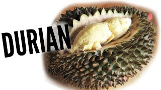 DURIAN Taste Test | FRUITY FRUITS