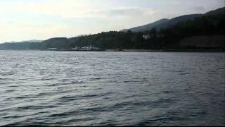 Дельфины в Совет-квадже(, 2011-08-03T17:46:22.000Z)