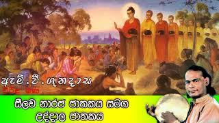සීලව නාරජ ජාතකය සමග උද්දාල ජාතකය | Viridu Bana | M V Gunadasa