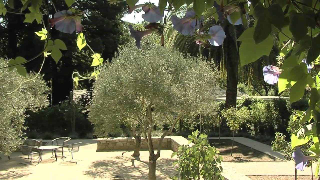 Mediterranean Landscape Design - YouTube