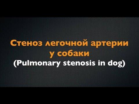 Стеноз гортани у детей: причины, симптомы, лечение ::