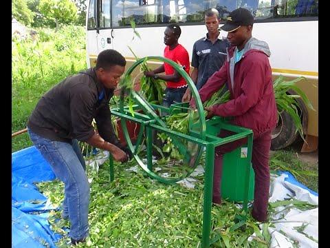 Affordable forage chopper for small-scale farmers--Burkina Faso