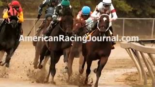Triple Crown Horse Racing Picks & Churchill Downs Handicapping Selections  Preakness Belmont Stakes