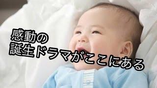 女優の市川由衣(30)が、第1子となる男児を出産した。26日、夫で俳優の...