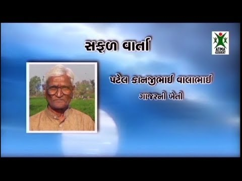 High density of Guava farming - Paadi Pantalu   FunnyCat TV