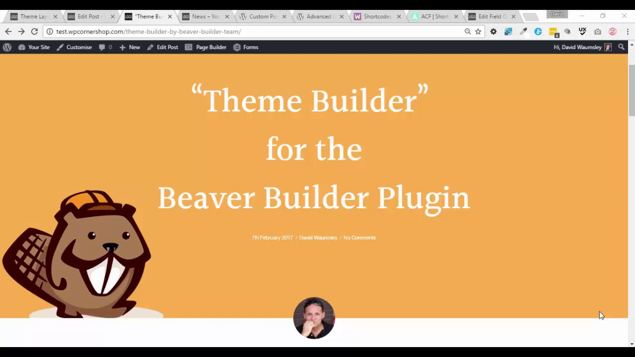 Mastering Beaver Themer - Full Review + Ultimate Guide (2019) - BeeWits