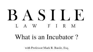 What is an Incubator ?