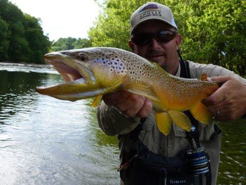 Appalachian Spring - Jeff Wilkins Fly Fishing