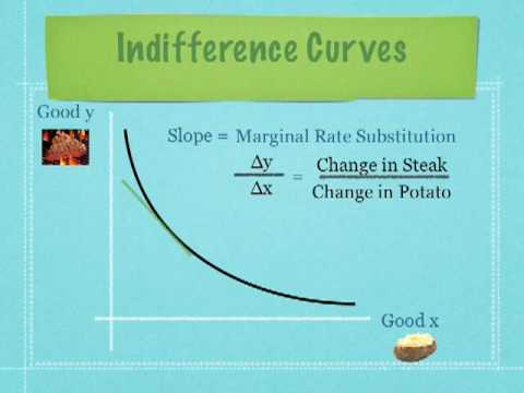 Introduction to Indifference Curves and Budget Lines Economics