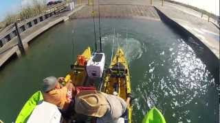 BTB Offshore Motor Kayak Catamaran Oil Rig Fishing Trip 9-2012