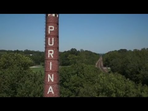 Our Values Stand the Test of Time - Purina