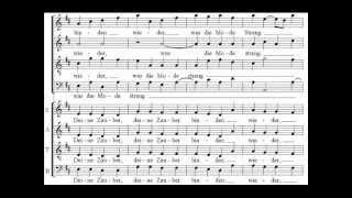 Beethoven - 9th Symphony - 4th movement -