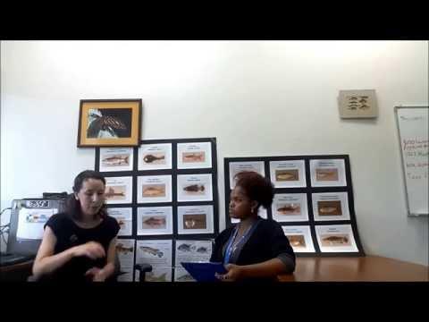 River Health in Trinidad and Tobago 816001887