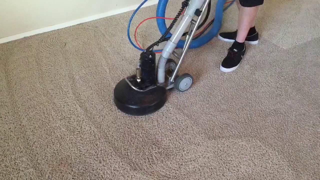 Best Carpet Cleaners Surprise AZ
