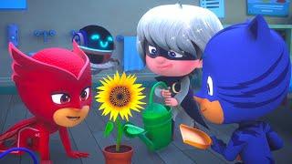 PJ Masks get turned into Babies!  PJ Masks Official