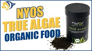 NYOS True Algae Organic Fish Food: What YOU Need to Know