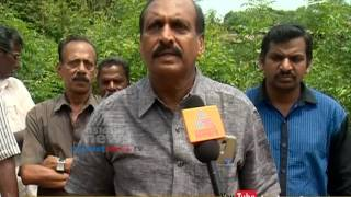 Organic curry leaves farming in Palakkad