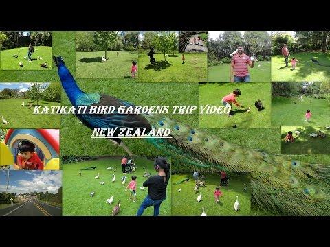 Trip to Bird Gardens -  Katikati | New Zealand | Must Watch | Carvlog |
