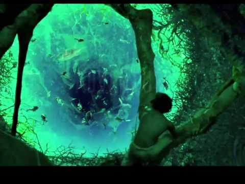 Life of PI Video Music