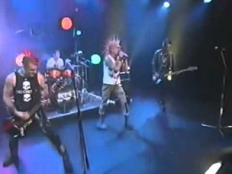 casualties- LIVE 2003