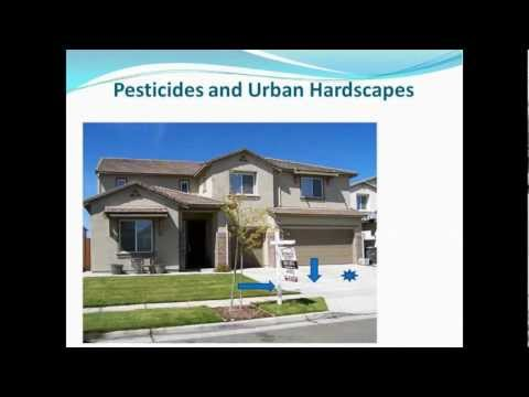 Loose Particles and Pesticide Runoff from Urban Hard Surfaces