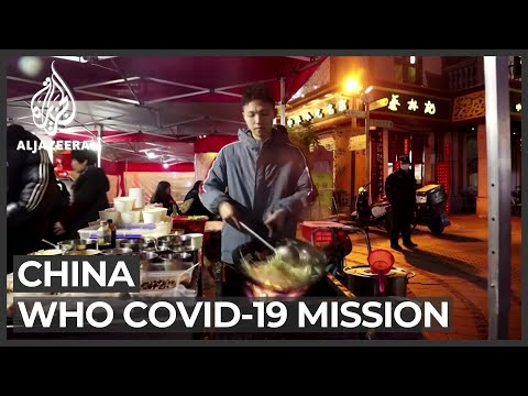 WHO Team To Probe COVID-19 Origins In China's Wuhan