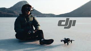 Just Fly It - DJI FPV Cinematic 4K【JAPAN】